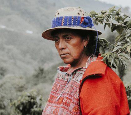 jonas-reindl-coffee-roasters-vienna-origin-guatemala-finca-quejina-crop-2
