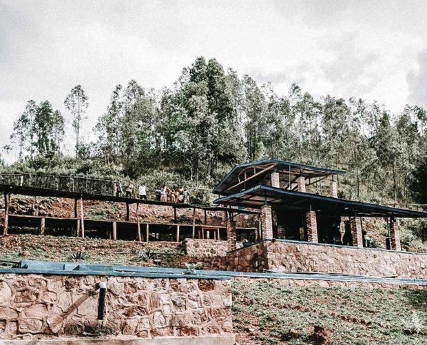 jonas-reindl-coffee-roasters-vienna-origin-rwanda-bumbogo-3