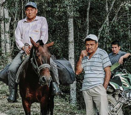 jonas-reindl-coffee-roasters-vienna-origin-peru-cajamarca-3