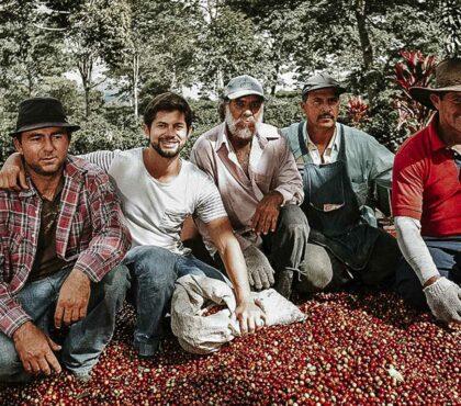 jonas-reindl-coffee-roasters-origin-don-alfonso-1